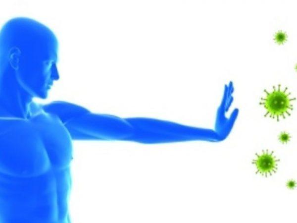 Как укрепить иммунитет и держать его в тонусе - Здоровье и спорт - TCH.ua