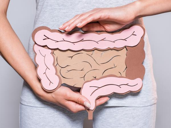 Как микробиом кишечника влияет на организм человека — [SayYes]